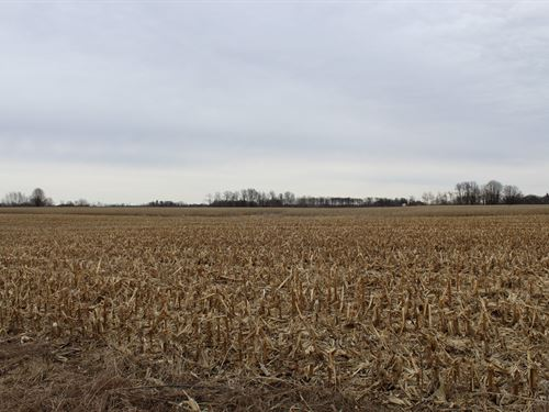 Mille Lacs County Tillable Land : Princeton : Mille Lacs County : Minnesota