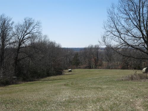 Smaller Hunting Tract Northwest : Cainsville : Harrison County : Missouri