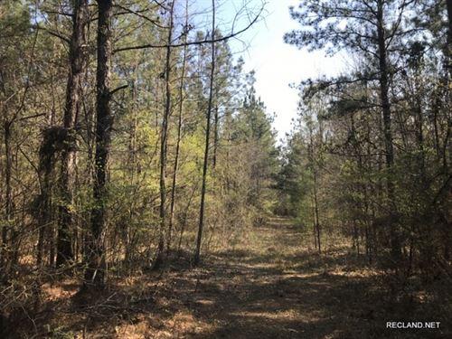 20 Ac, Timberland & Hunting Tr : Georgetown : La Salle Parish : Louisiana