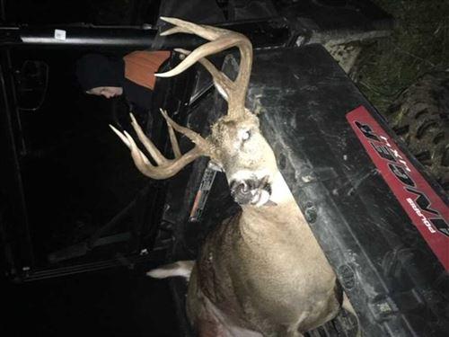 113 Acres of Hunting & Pasture : Seneca : Nemaha County : Kansas
