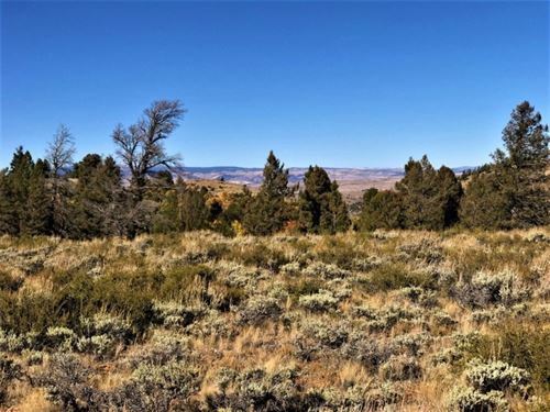 Blue Mesa Lots 52-54 : Powderhorn : Gunnison County : Colorado