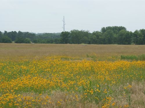 Farm Ranch Vacant Land Great : Pryor : Mayes County : Oklahoma