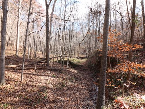 Sr 554, 96 Acres : Bidwell : Gallia County : Ohio