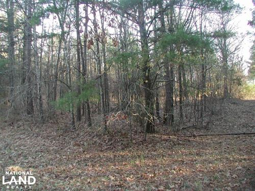 24 Ac Green Gable Rd : Terry : Hinds County : Mississippi
