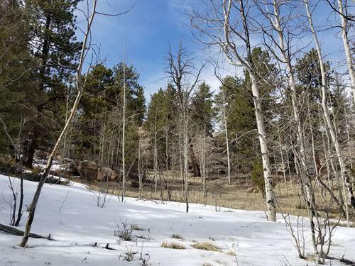 28 Acres Only $49,900 : Cripple Creek : Teller County : Colorado