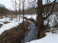 Amazing Diversity Sanctuary Retreat : Bear Creek : Sauk County : Wisconsin