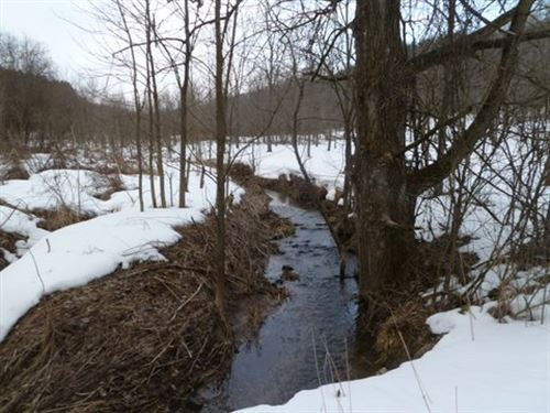 Amazing Diversity Sanctuary Retreat : Bear Creek : Sauk County : Wisconsin