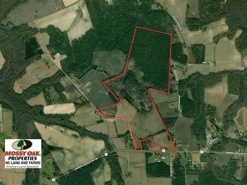 240 Acres of Farm And Timber Land : Cerro Gordo : Columbus County : North Carolina