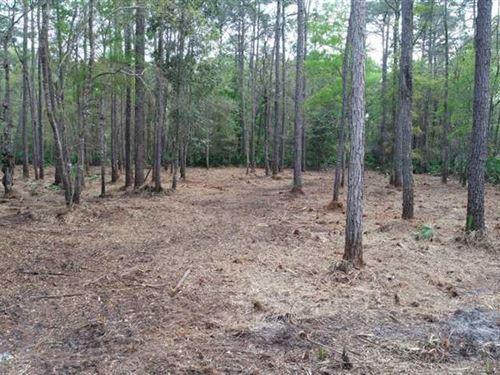 5.86 Acres Land For Sale Kingsland : Kingsland : Camden County : Georgia