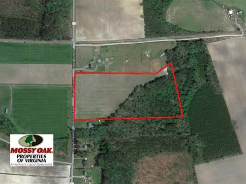Reduced, 24 Acres of Farm And Tim : Carrsville : Isle Of Wight County : Virginia