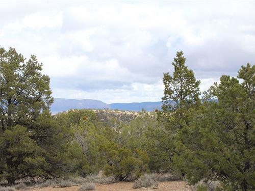40 Acres.Or Make 80 Acres.25,000 : Seligman : Yavapai County : Arizona