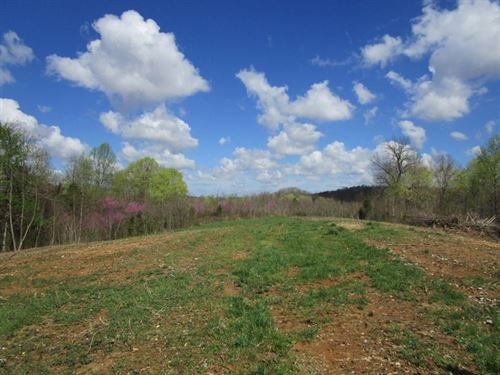 Wooded, Recreational, Land, Adair : Columbia : Adair County : Kentucky