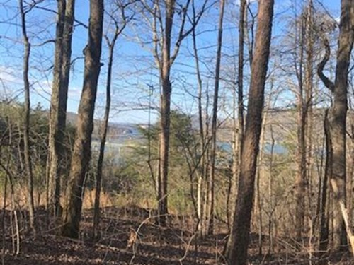 8+/- Acres Lake View Property : Guild : Marion County : Tennessee