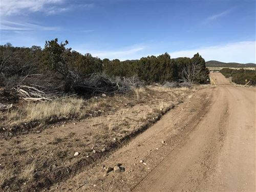 6 Acres With National Forest Access : White Oaks : Lincoln County : New Mexico