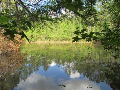 45 Acres of River Frontage : Moultrie : Colquitt County : Georgia