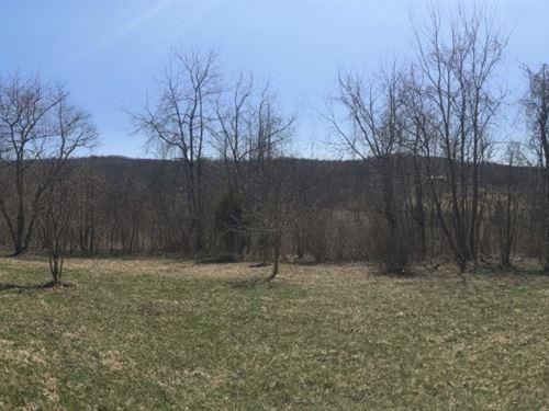 Wooded Acreage For Sale : Nashport : Muskingum County : Ohio