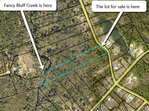 90K Riverfront Lot For Only 25K : Woodbine : Camden County : Georgia