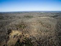 80 Acres For Sale in Reynolds Coun : Ellington : Reynolds County : Missouri
