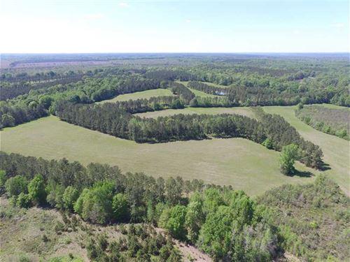 Drop Dead Gorgeous 331 Acre Huntin : Little Texas : Macon County : Alabama