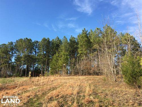 Beautiful Greenville County Homesit : Honea Path : Greenville County : South Carolina