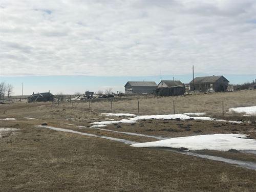 Rural Farm Turkey Track Road Saco : Saco : Phillips County : Montana
