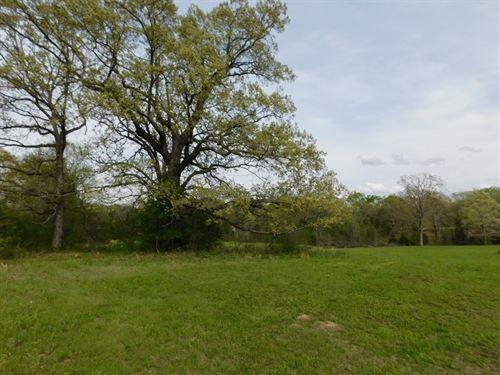 Land TN Pasture, Barn, Pond : Adamsville : Hardin County : Tennessee