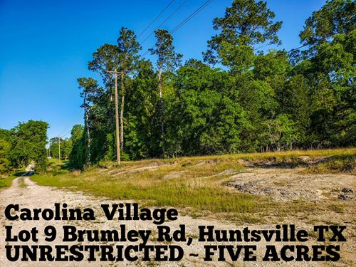 5 Acres In Walker County : Huntsville : Walker County : Texas