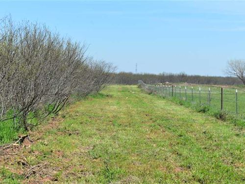 9.25 Residential Acres Just South : Wichita Falls : Archer County : Texas