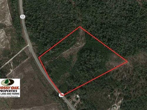 Under Contract, 30 Acres of Hunti : Kelly : Bladen County : North Carolina