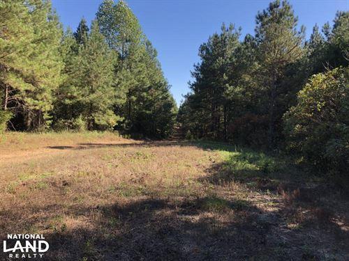 Hamilton Timber Investment : Hamilton : Marion County : Alabama