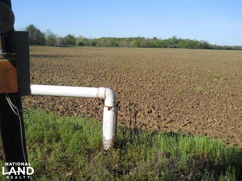 Irrigated Farm Land : Doddsville : Bolivar County : Mississippi