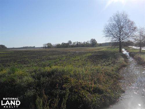 Dry Land Ag Tract : Doddsville : Bolivar County : Mississippi