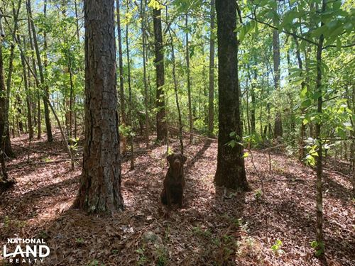 Westover Timber And Recreation Inve : Westover : Shelby County : Alabama