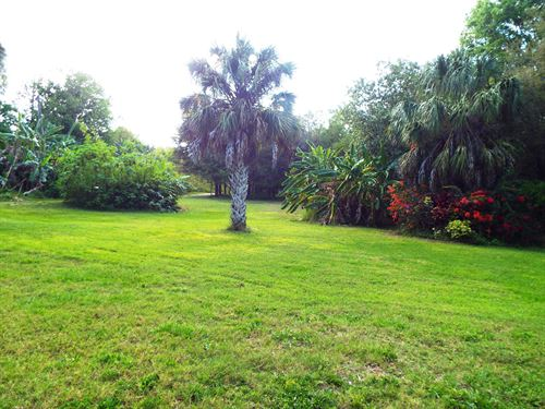 Site For Growing Plants For Rent : Waverly : Polk County : Florida