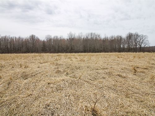 Ninevah Rd, 6 Acres : Ashtabula : Ohio