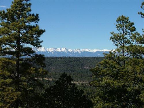 D44 Santa Fe Trail Ranch : Trinidad : Las Animas County : Colorado
