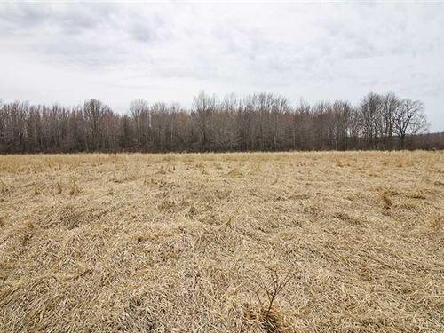 Ninevah Rd, 6 Acres, Ashtabula : Ashtabula : Ohio