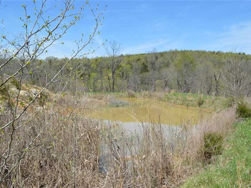 40 Acres in Summit, AR : Summit : Marion County : Arkansas