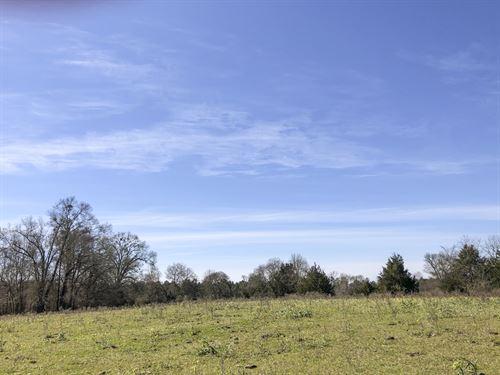 70 Acres Cr 3302-1 : Jacksonville : Cherokee County : Texas