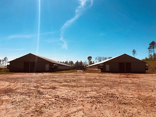 Poultry Farm In Newell : Newell : Cleburne County : Alabama