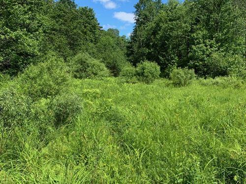 Stone Hill Acres : Williamstown : Oswego County : New York