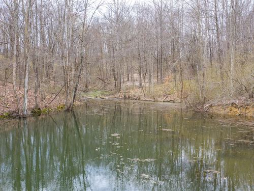 Clary Rd, 10 Acres : Kimbolton : Guernsey County : Ohio