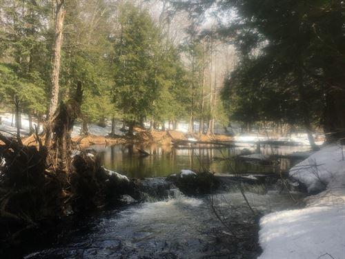 On Beaver Dam Brook : Orwell : Oswego County : New York