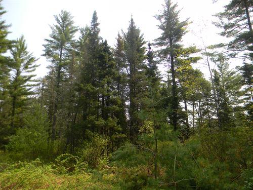 Gold Mine Road : Iron River : Iron County : Michigan