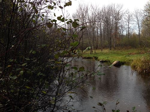Deer River 80, Bradley Rd : Crystal Falls : Iron County : Michigan