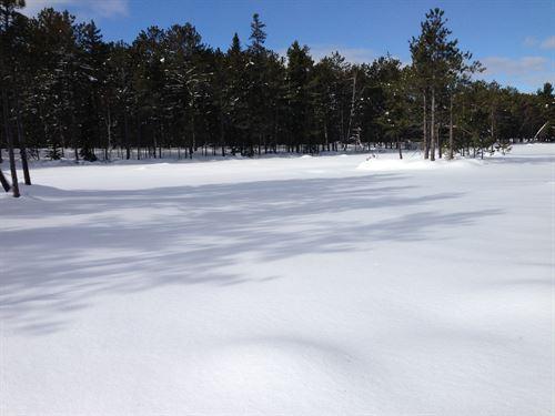 Rice Lake 40, Little Traverse Rd : Lake Linden : Houghton County : Michigan