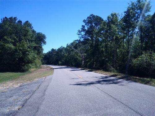 56 Acres in Cottonwood, AL : Cottonwood : Houston County : Alabama