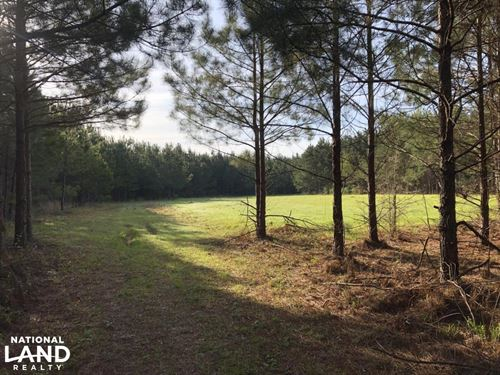Timber Investment Hunting Homesite : Meridian : Lauderdale County : Mississippi
