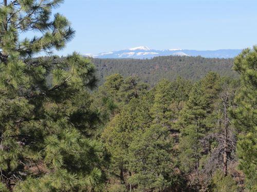 C36 Santa Fe Trail Ranch : Trinidad : Las Animas County : Colorado