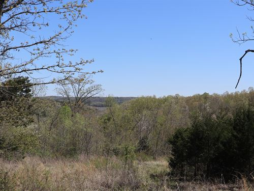 Ozarks Property Partial Lake View : Elizabeth : Baxter County : Arkansas